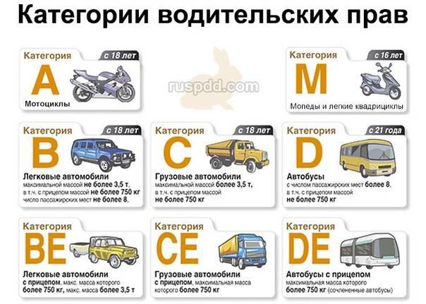 8 поводов аннулировать водительские права: что нужно знать водителям? - блог мониторингавто