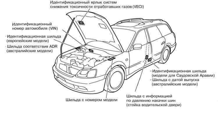 У каких машин оцинкованный кузов - список марок и моделей renoshka.ru