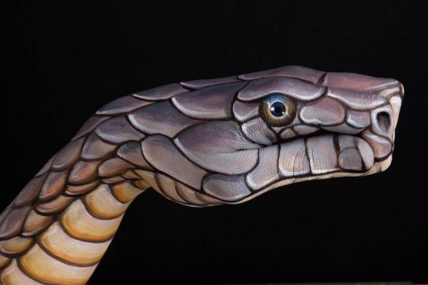 Характеристики dodge viper: легенда о скоростной гадюке