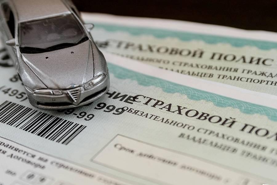 Страховка для начинающего водителя: сколько стоит осаго для новичка