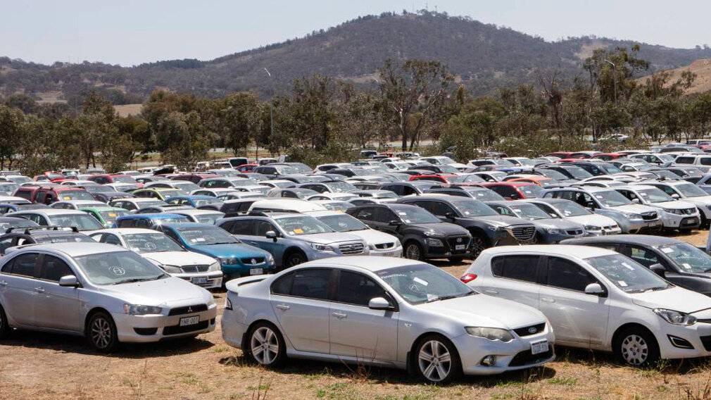 На каких машинах ездят в австралии – популярные модели