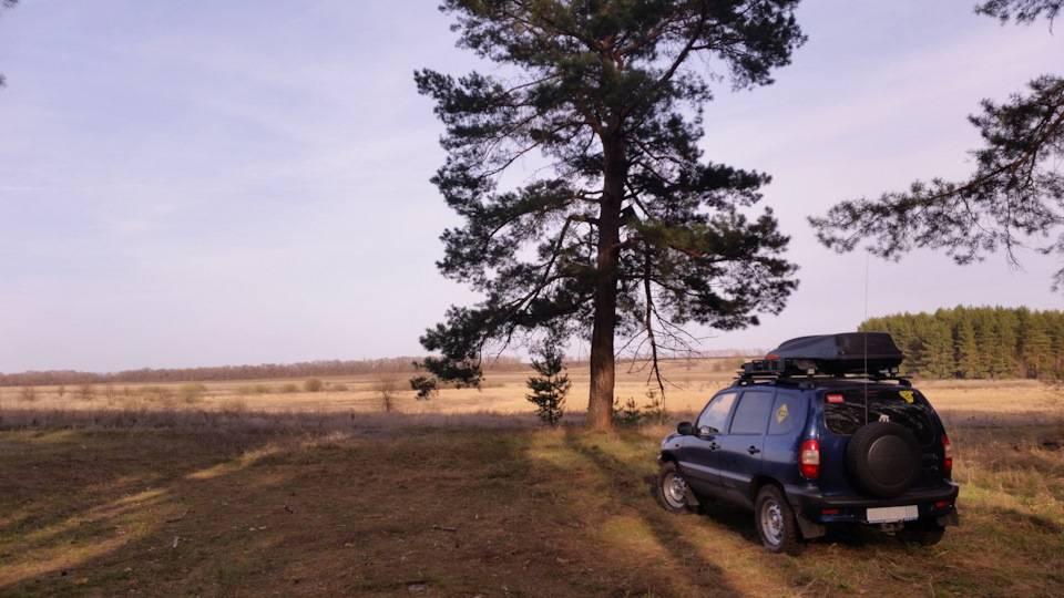 Chevrolet niva: стоит ли покупать внедорожник за 300 тысяч рублей