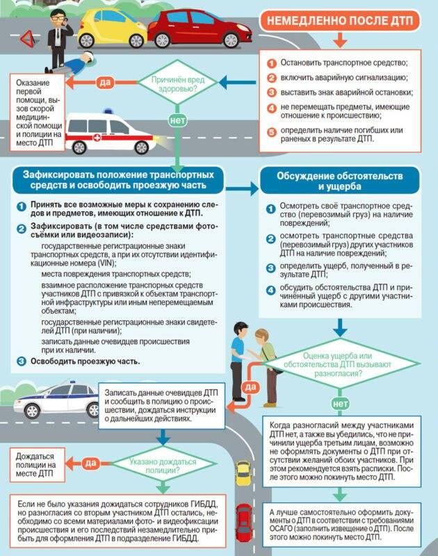 Пассажир в дтп: виновность и выплаты осаго в 2021