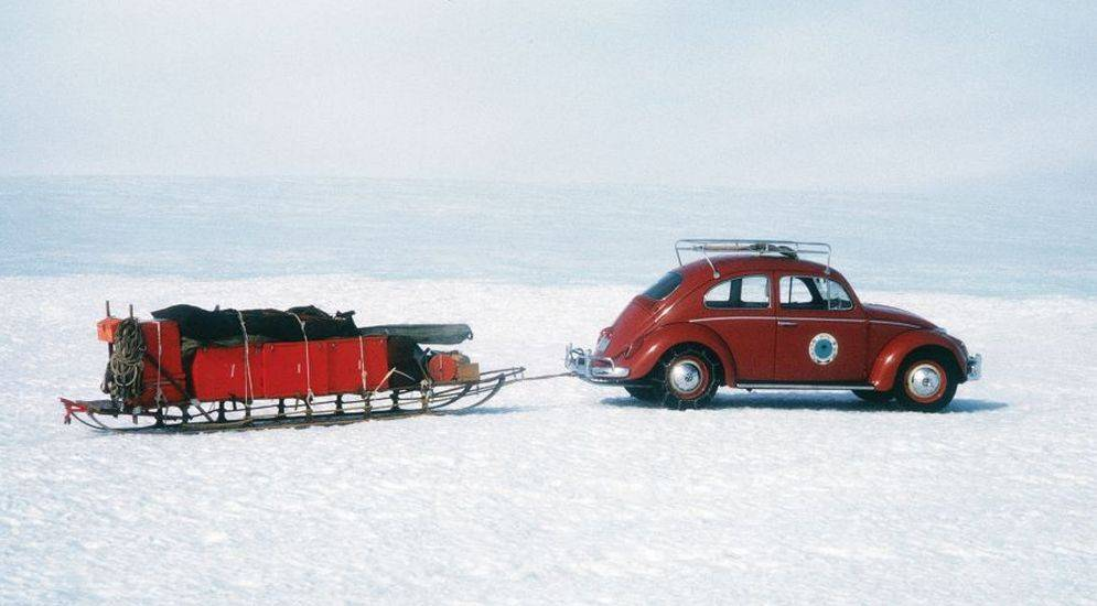 Чем отличается арктика от антарктики и антарктиды и что у них общего? :: инфониак