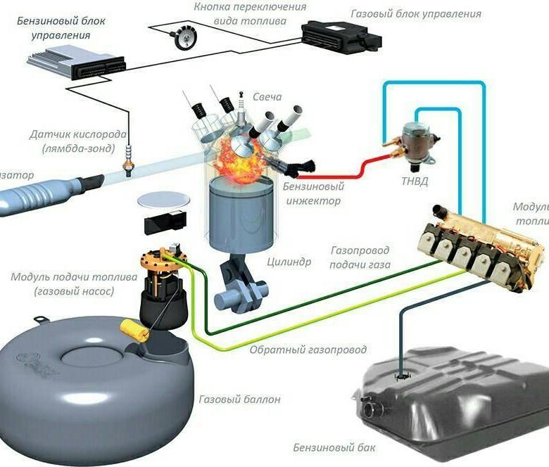 Что такое газовое оборудование (гбо) на авто и из чего состоит