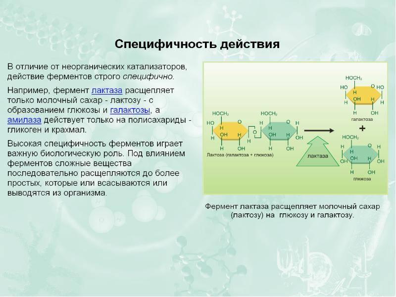 Устройство и принцип работы катализатора