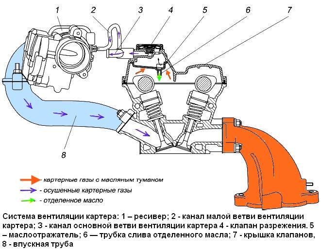 Вентиляция картерных газов - что такое клапан вентиляции картера (вкг)